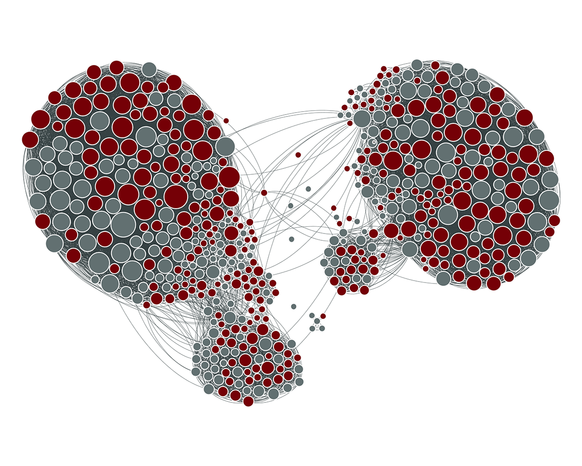 Facebook Network: Gephi
